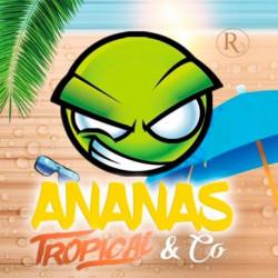 Arôme Concentré Ananas-Tropical & Co - Exo