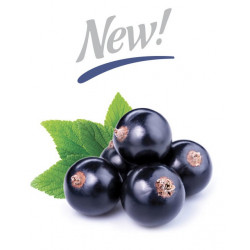 Arôme Black Currant Flavor - Silverline