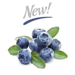 Arôme Blueberry Extra Flavor - Silverline